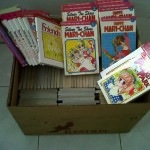 Japanese Comis for Kids in Flores
